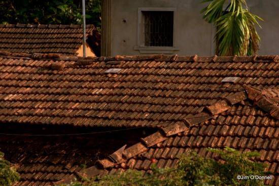 DSC 0212 2 e1325738810836 Sri Manguesh Temple