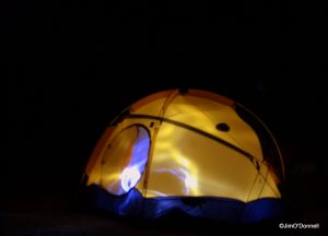 1 DSC 0012 300x216 Photography at Night. Bottom of the Rio Grande Gorge. My Shot of the Day. June 29, 2012