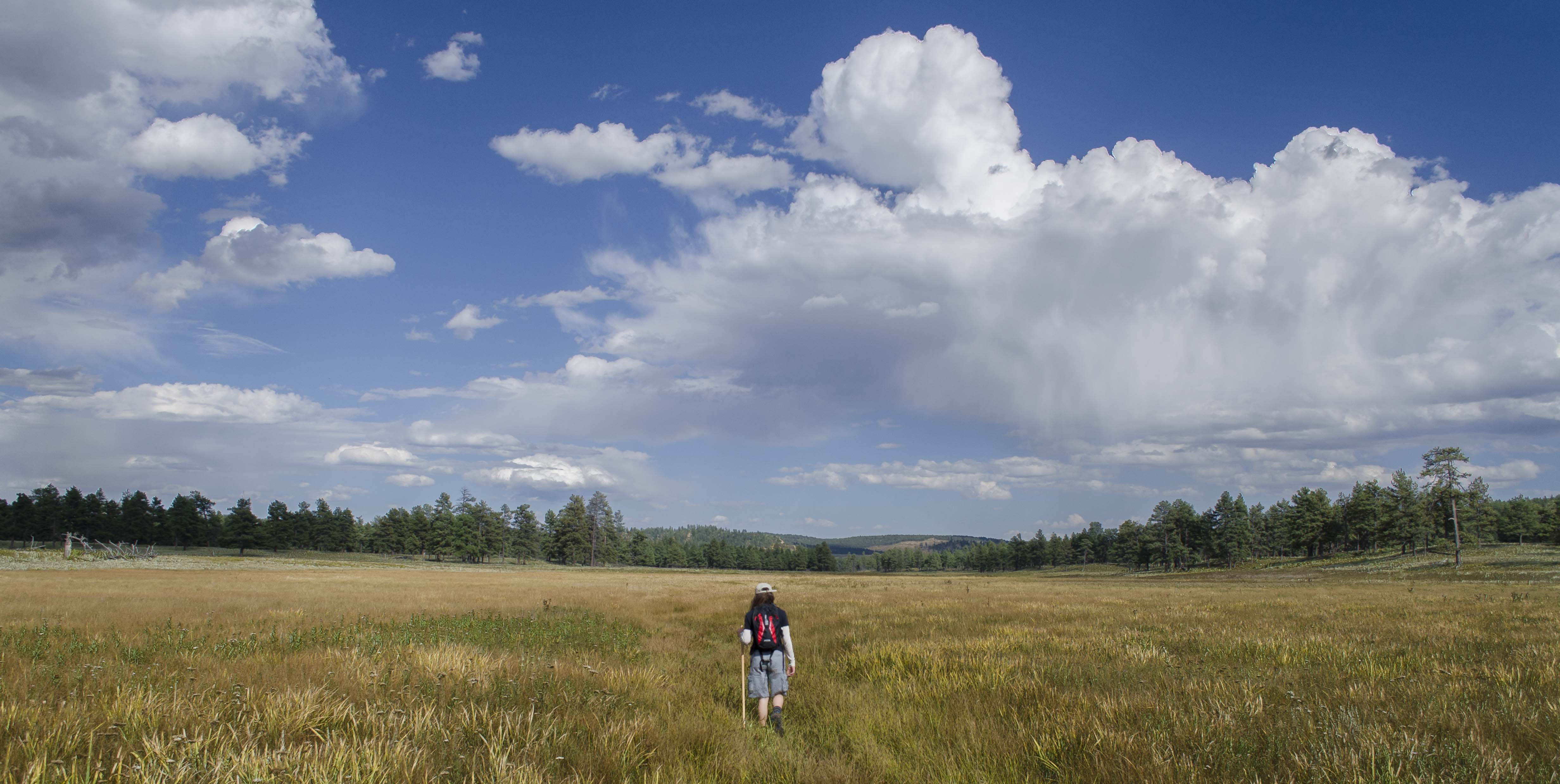 World Wetland Day - the Wetland Jewels of Northern New Mexico